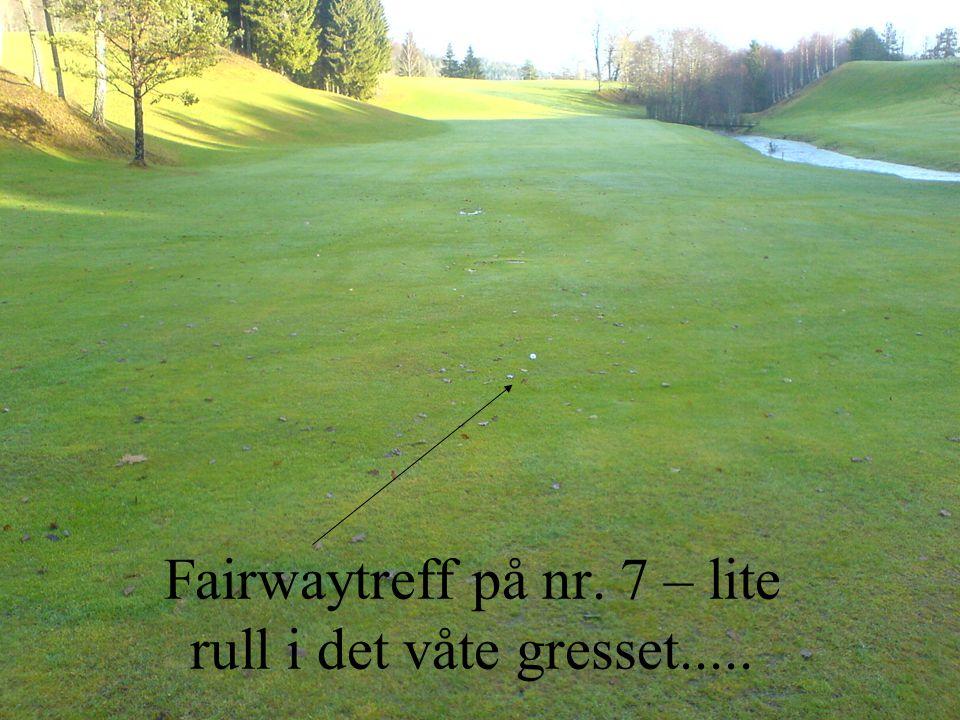Fairwaytreff på nr. 7 – lite rull i det våte gresset.....