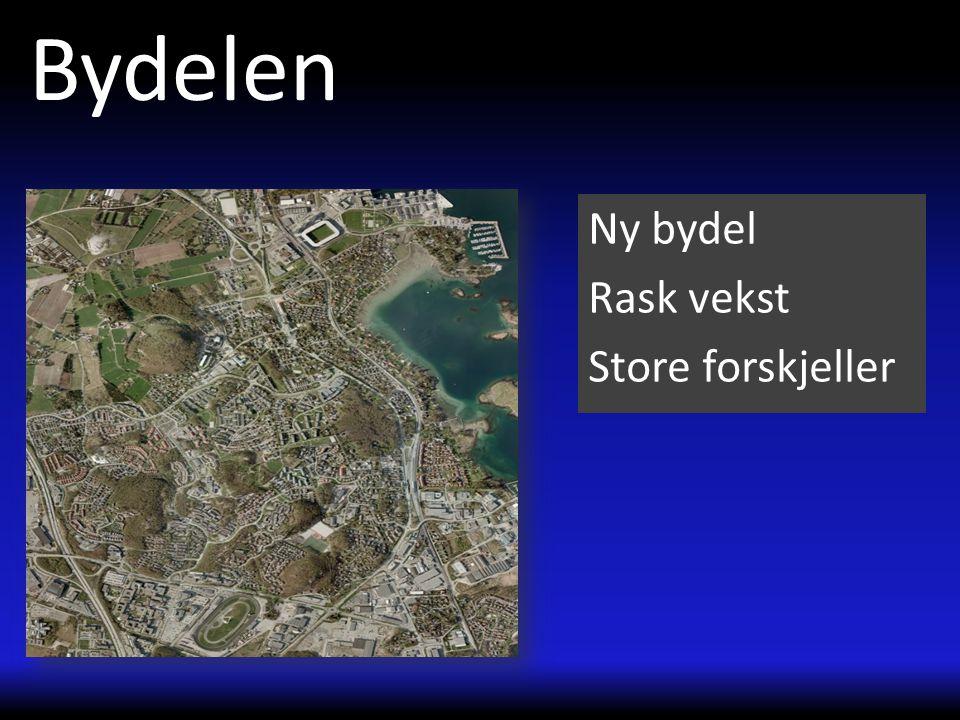 De usynlige Opplæring Tallmatriell Oversettelse Fargerik Fotball NFF NKS/NFF Johannes- Læringssenter Fremmedspråklig Gautesete skole20% Stavanger12,8%