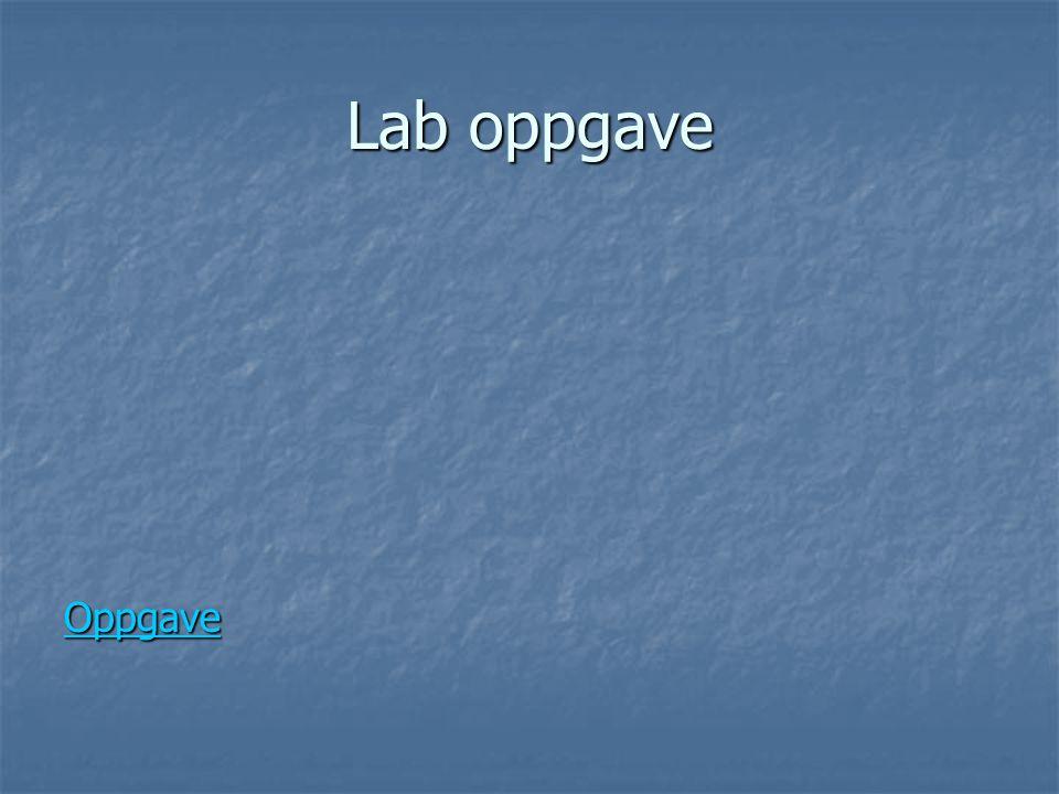 Lab oppgave Oppgave