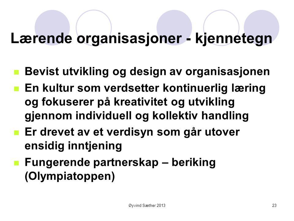 Øyvind Sæther 2013 Sentrale kjennetegn for en lærende organisasjon  Struktur og kultur for kunnskaps- og erfaringsdeling og samhandling  God innsikt