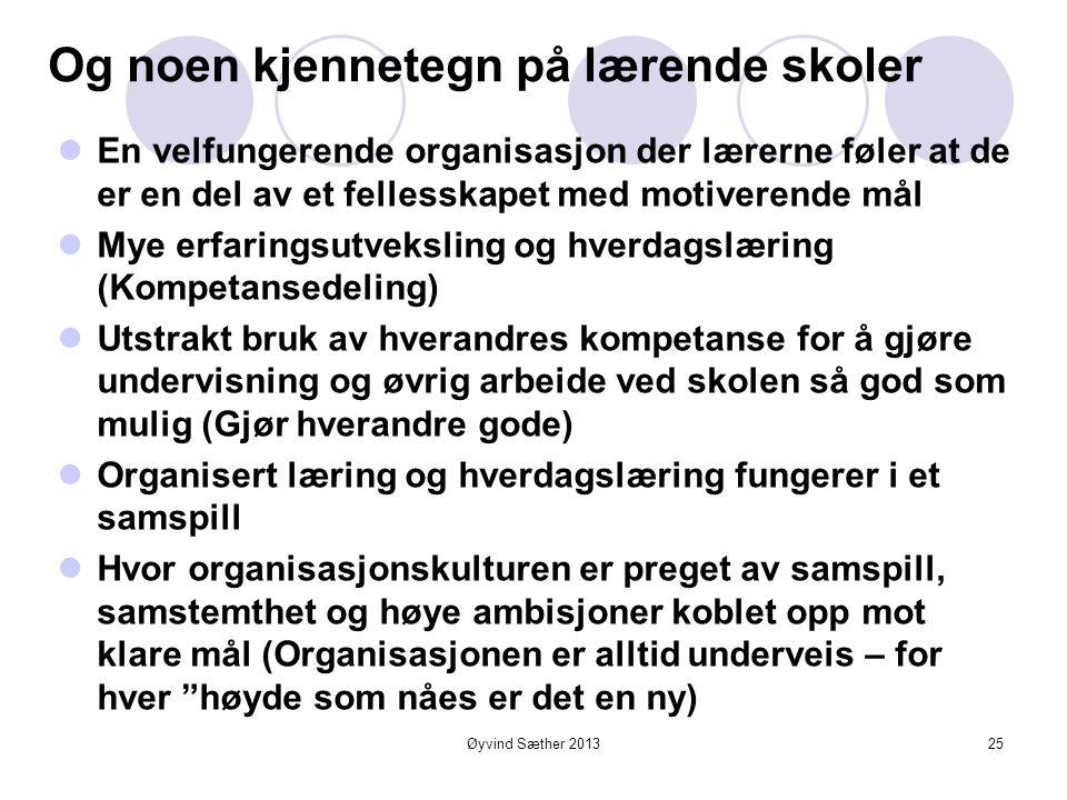 """Øyvind Sæther 2013 Lærende organisasjoner er alltid underveis  """"Den som har begge beina på jorda står stille""""  Ingenting kan være så farlig som suks"""