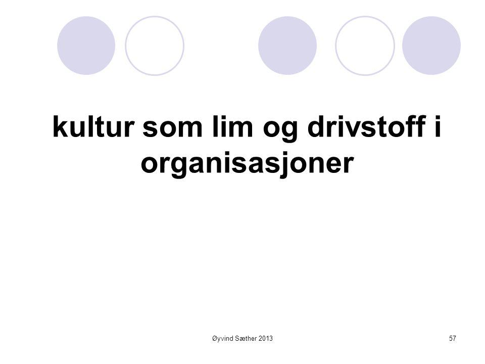 """Øyvind Sæther 2013 Dokumenterte resultater er det beste grunnlaget for spredning  """"Vellykkede endringsprosesser starter med resultater""""  Men det er"""