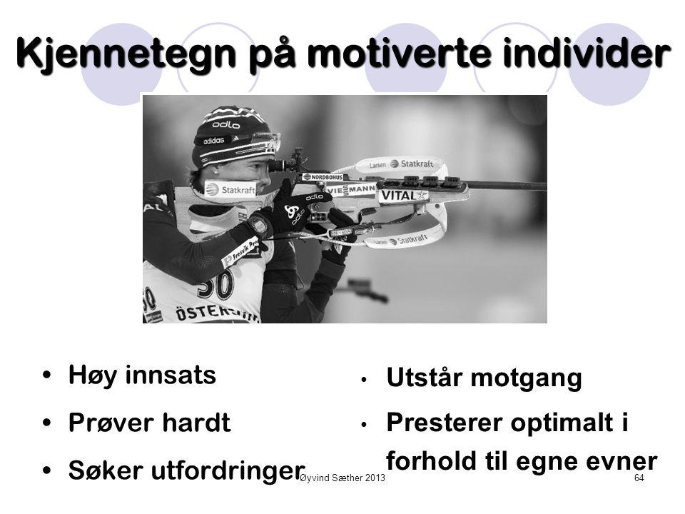 Øyvind Sæther 2013 Motivasjon 63