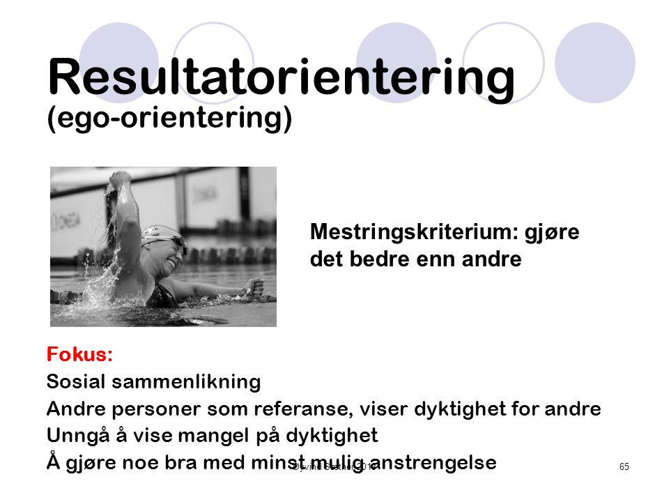 Øyvind Sæther 2013 Kjennetegn på motiverte individer •Høy innsats •Prøver hardt •Søker utfordringer • Utstår motgang • Presterer optimalt i forhold ti
