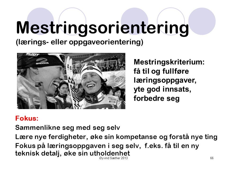 Øyvind Sæther 2013 Resultatorientering (ego-orientering) Fokus: Sosial sammenlikning Andre personer som referanse, viser dyktighet for andre Unngå å v