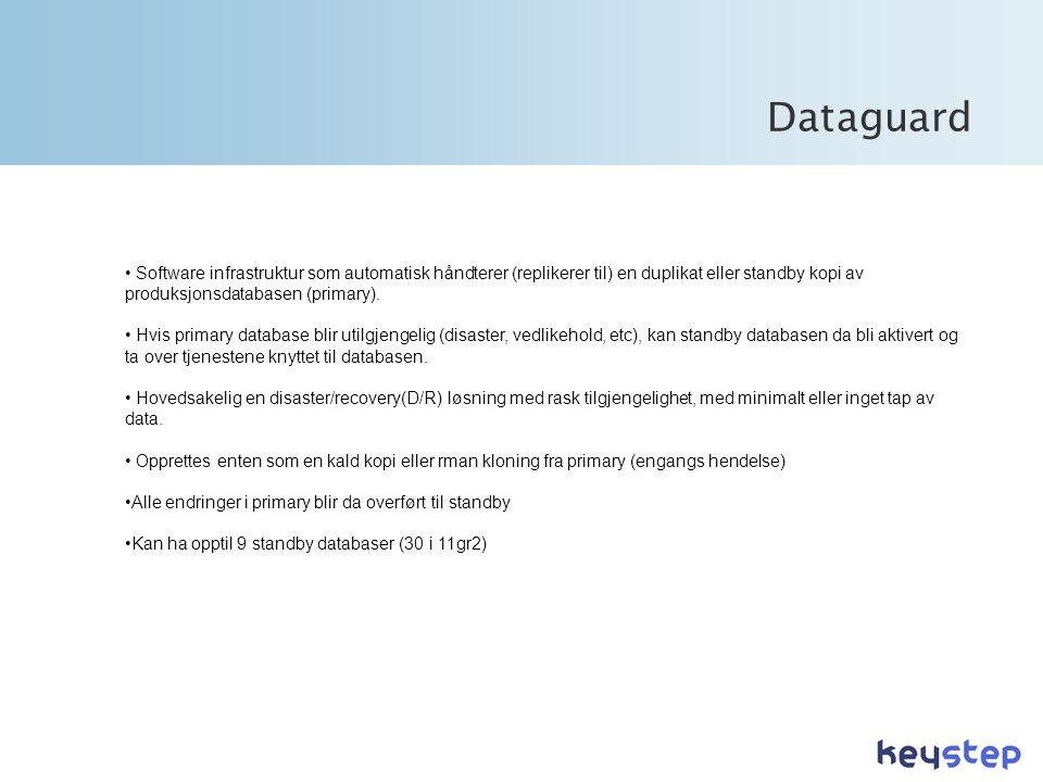 • Software infrastruktur som automatisk håndterer (replikerer til) en duplikat eller standby kopi av produksjonsdatabasen (primary).