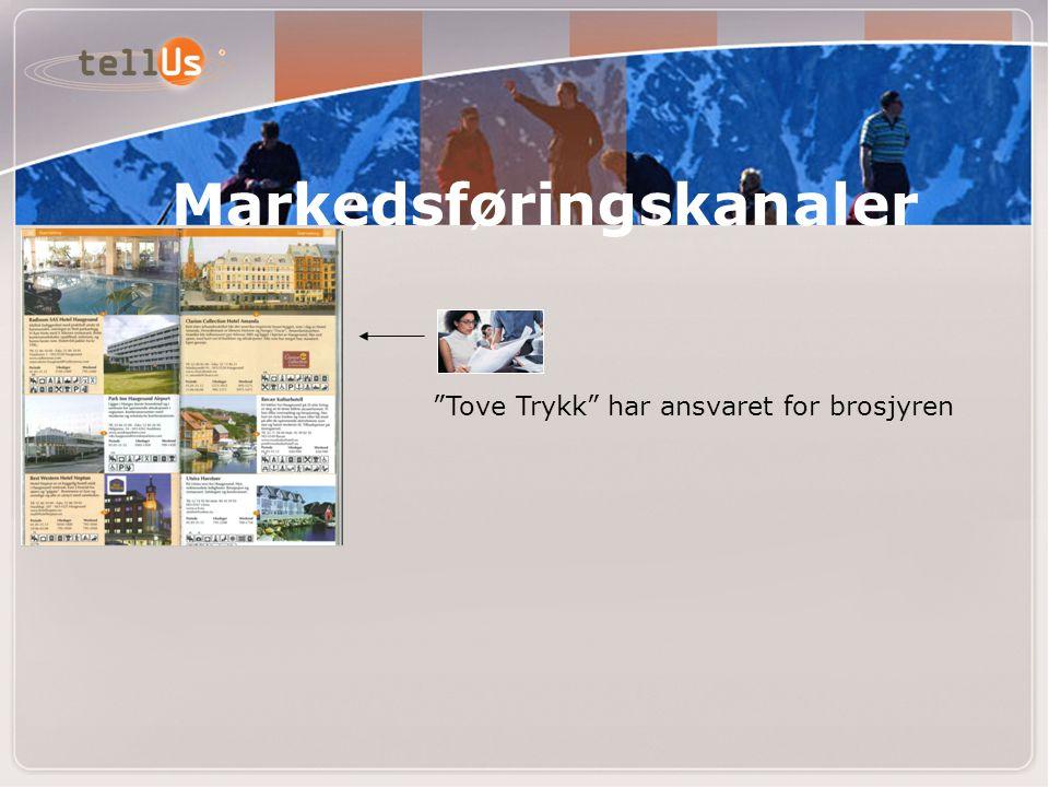 """""""Tove Trykk"""" har ansvaret for brosjyren Markedsføringskanaler"""