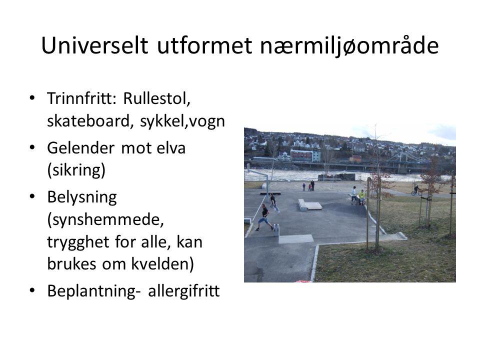 Universelt utformet nærmiljøområde • Trinnfritt: Rullestol, skateboard, sykkel,vogn • Gelender mot elva (sikring) • Belysning (synshemmede, trygghet f