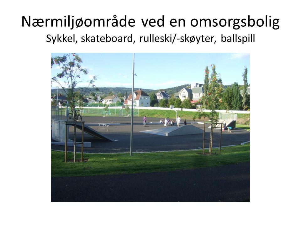 Nærmiljøområde ved en omsorgsbolig Sykkel, skateboard, rulleski/-skøyter, ballspill