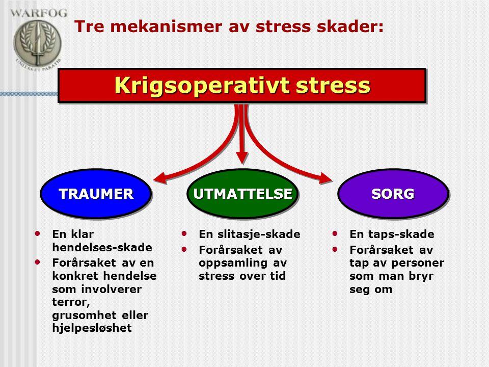 Tre mekanismer av stress skader: TRAUMERTRAUMER • En klar hendelses-skade • Forårsaket av en konkret hendelse som involverer terror, grusomhet eller hjelpesløshet SORGSORG • En taps-skade • Forårsaket av tap av personer som man bryr seg om UTMATTELSEUTMATTELSE • En slitasje-skade • Forårsaket av oppsamling av stress over tid Krigsoperativt stress