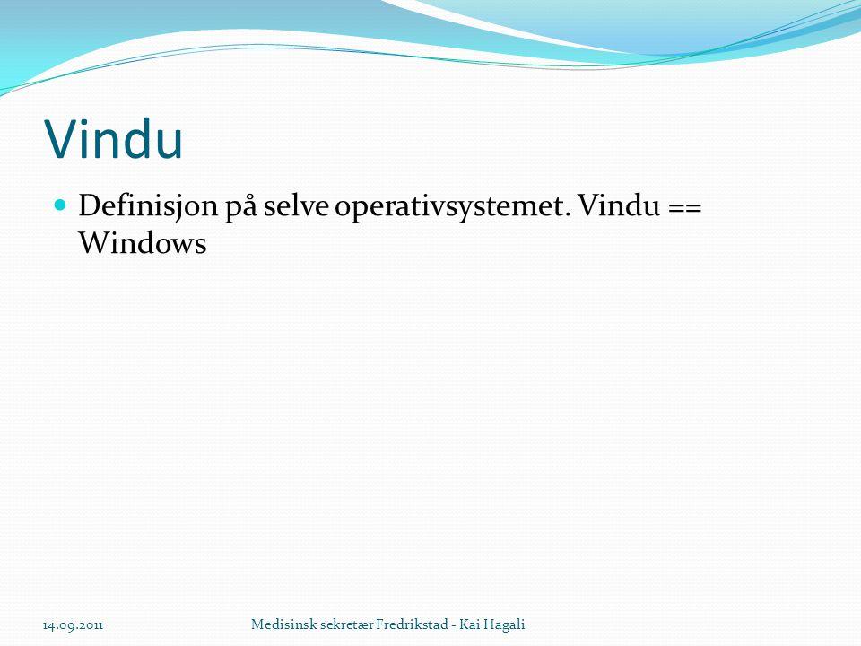 Vindu  Definisjon på selve operativsystemet. Vindu == Windows 14.09.2011Medisinsk sekretær Fredrikstad - Kai Hagali