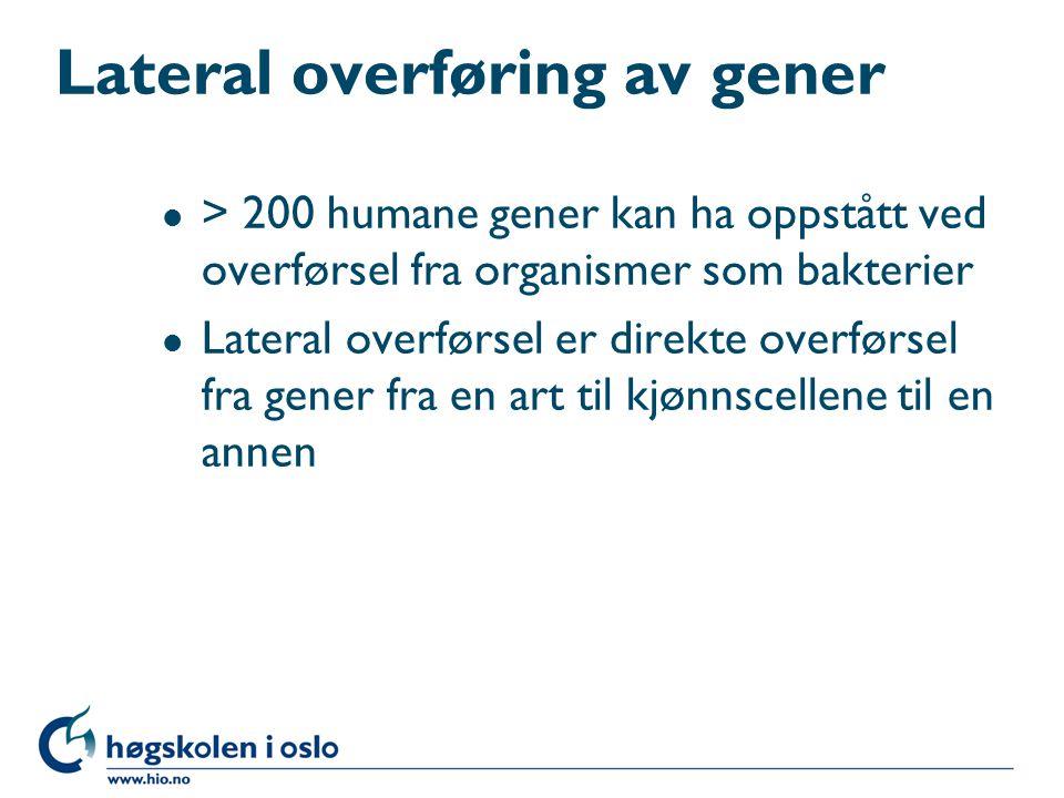 Lateral overføring av gener l > 200 humane gener kan ha oppstått ved overførsel fra organismer som bakterier l Lateral overførsel er direkte overførse