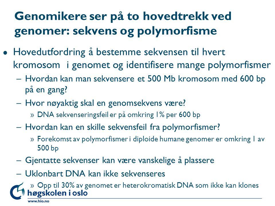 Genomikere ser på to hovedtrekk ved genomer: sekvens og polymorfisme l Hovedutfordring å bestemme sekvensen til hvert kromosom i genomet og identifise
