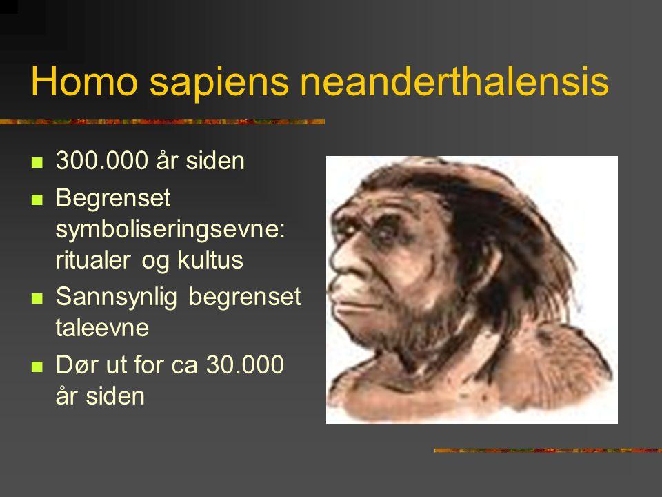 Homo sapiens neanderthalensis  300.000 år siden  Begrenset symboliseringsevne: ritualer og kultus  Sannsynlig begrenset taleevne  Dør ut for ca 30