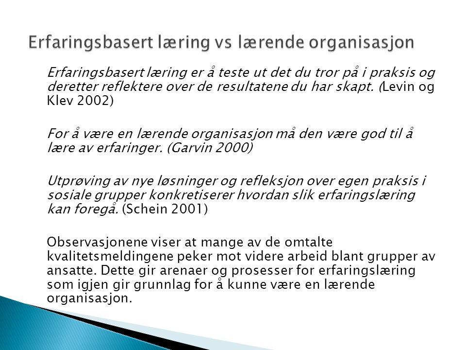 Erfaringsbasert læring er å teste ut det du tror på i praksis og deretter reflektere over de resultatene du har skapt. (Levin og Klev 2002) For å være