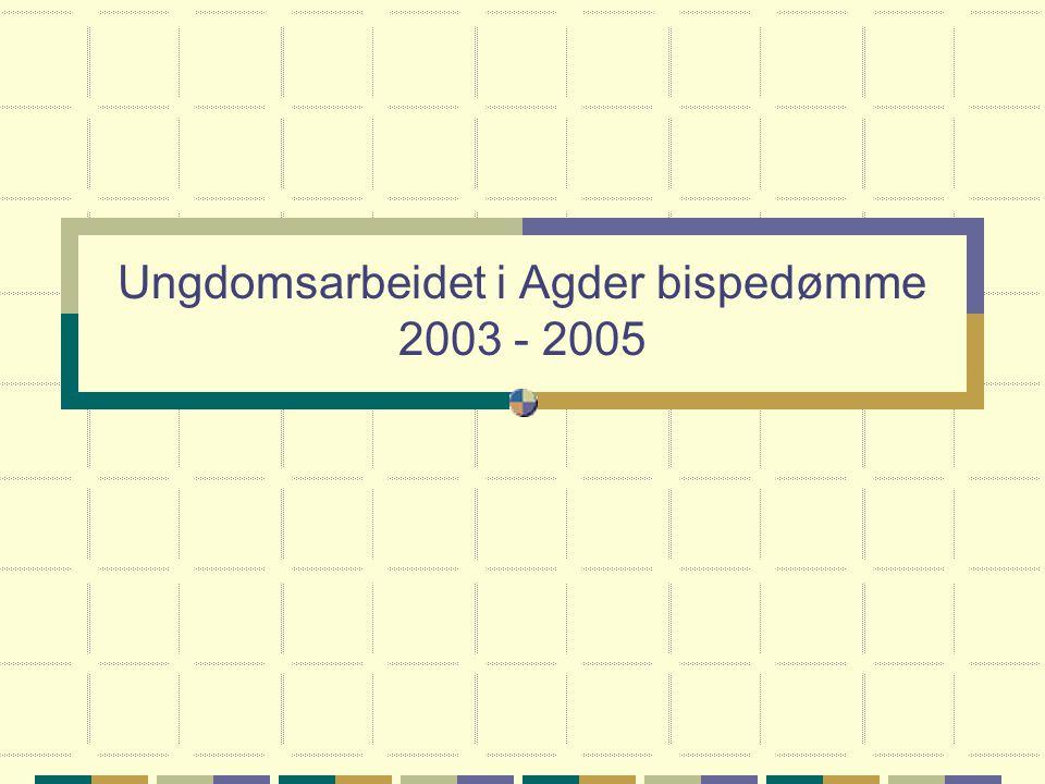 Ungdomsarbeidet i Agder bispedømme 2003 - 2005