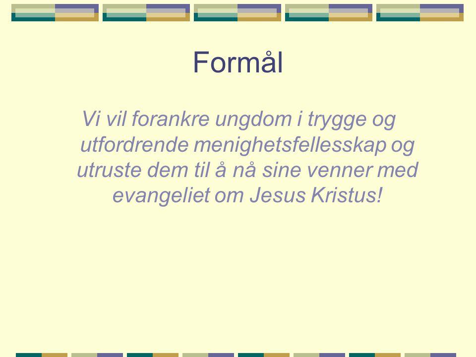 Utkast til Handlingsplan ABR forts...