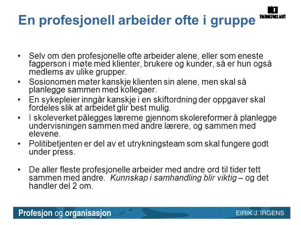En profesjonell arbeider ofte i gruppe •Selv om den profesjonelle ofte arbeider alene, eller som eneste fagperson i møte med klienter, brukere og kund