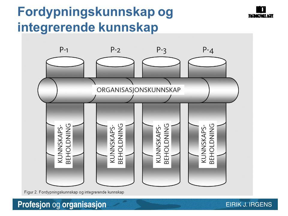 Figur 2. Fordypningskunnskap og integrerende kunnskap Fordypningskunnskap og integrerende kunnskap