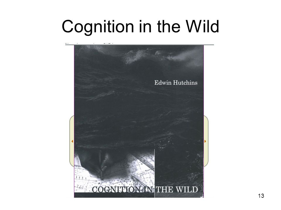 13 Cognition in the Wild