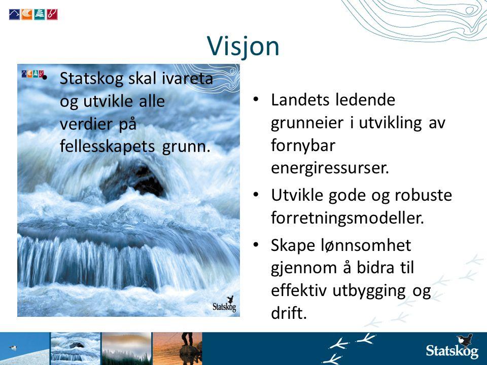 Visjon • Landets ledende grunneier i utvikling av fornybar energiressurser. • Utvikle gode og robuste forretningsmodeller. • Skape lønnsomhet gjennom