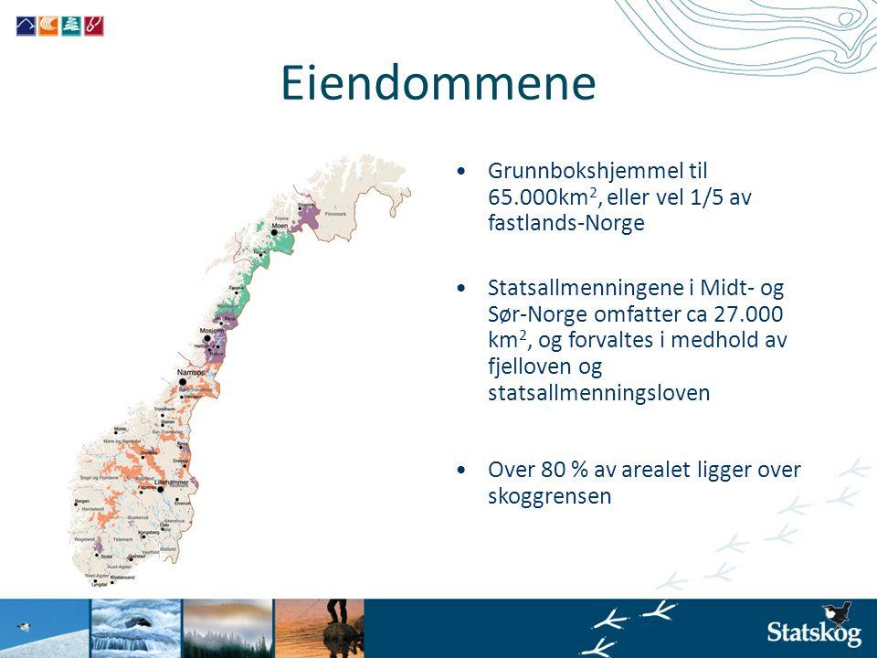 Eiendommene •Grunnbokshjemmel til 65.000km 2, eller vel 1/5 av fastlands-Norge •Statsallmenningene i Midt- og Sør-Norge omfatter ca 27.000 km 2, og fo