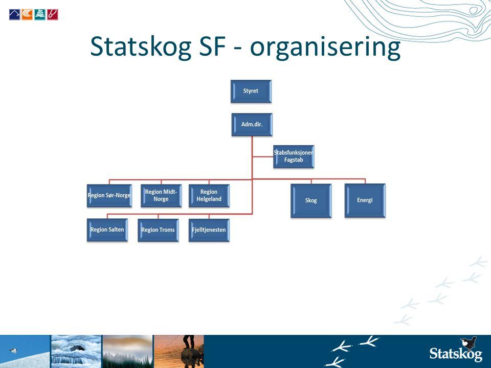 Statskog SF - organisering