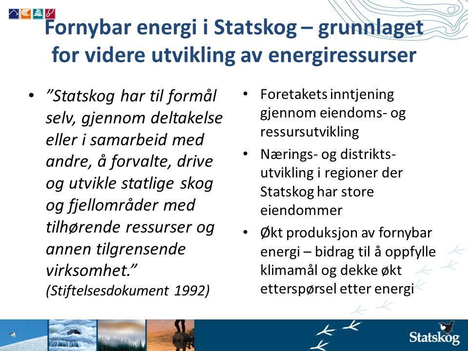 """Fornybar energi i Statskog – grunnlaget for videre utvikling av energiressurser • """"Statskog har til formål selv, gjennom deltakelse eller i samarbeid"""