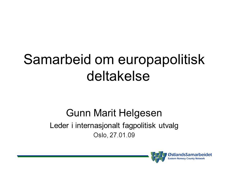 Samarbeid om europapolitisk deltakelse Gunn Marit Helgesen Leder i internasjonalt fagpolitisk utvalg Oslo, 27.01.09