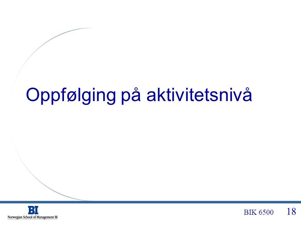 BIK 6500 18 Oppfølging på aktivitetsnivå