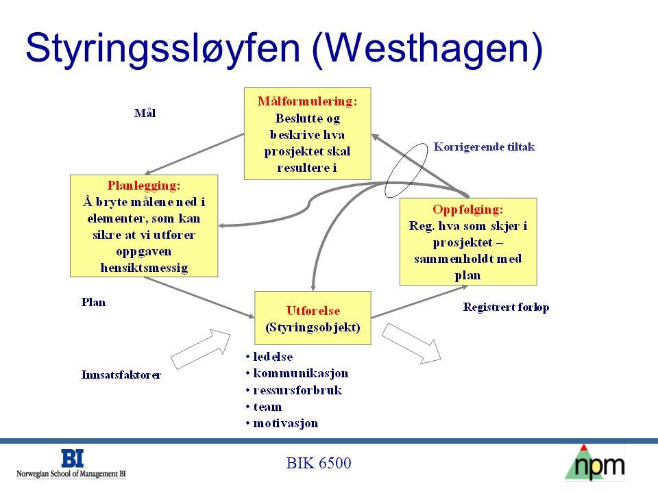 BIK 6500 Styringssløyfen (Westhagen)