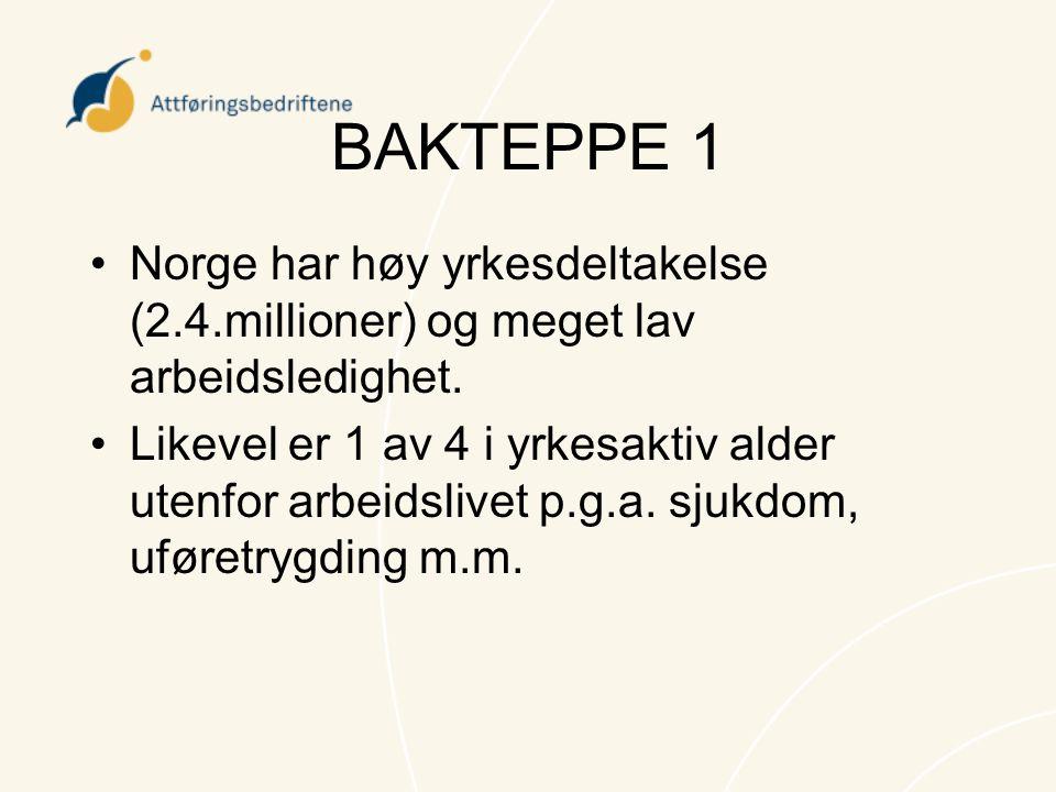 BAKTEPPE 1 •Norge har høy yrkesdeltakelse (2.4.millioner) og meget lav arbeidsledighet. •Likevel er 1 av 4 i yrkesaktiv alder utenfor arbeidslivet p.g