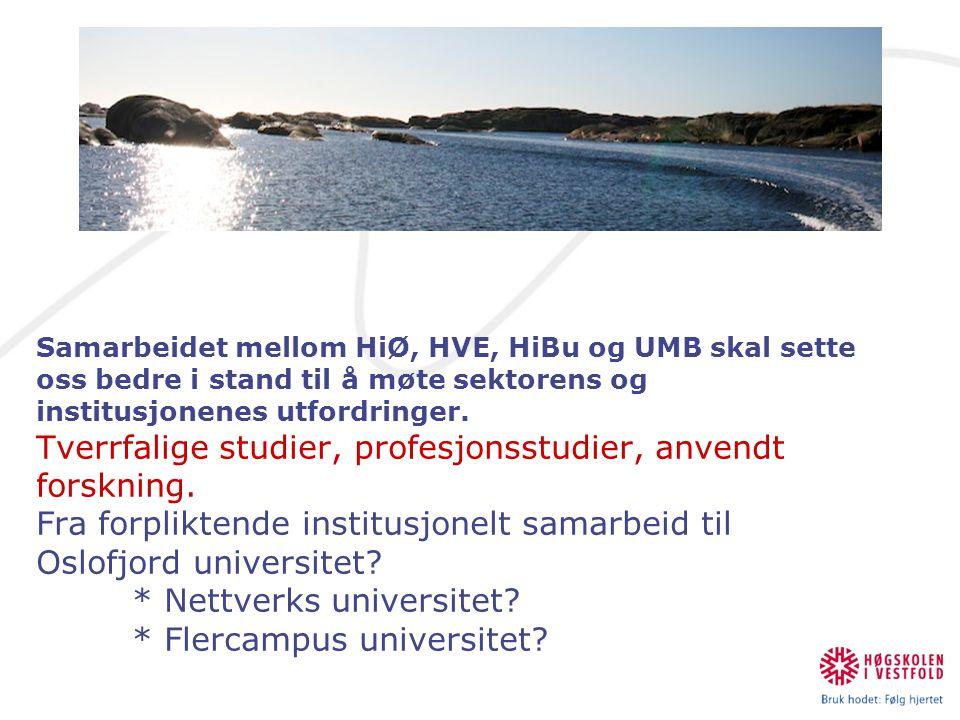 Samarbeidet mellom HiØ, HVE, HiBu og UMB skal sette oss bedre i stand til å møte sektorens og institusjonenes utfordringer. Tverrfalige studier, profe