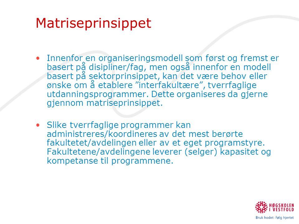 Matriseprinsippet •Innenfor en organiseringsmodell som først og fremst er basert på disipliner/fag, men også innenfor en modell basert på sektorprinsi
