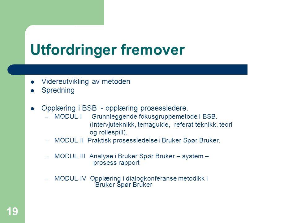19 Utfordringer fremover  Videreutvikling av metoden  Spredning  Opplæring i BSB - opplæring prosessledere.