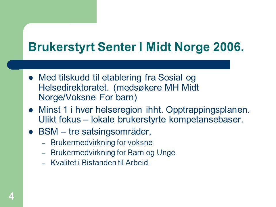 4 Brukerstyrt Senter I Midt Norge 2006.