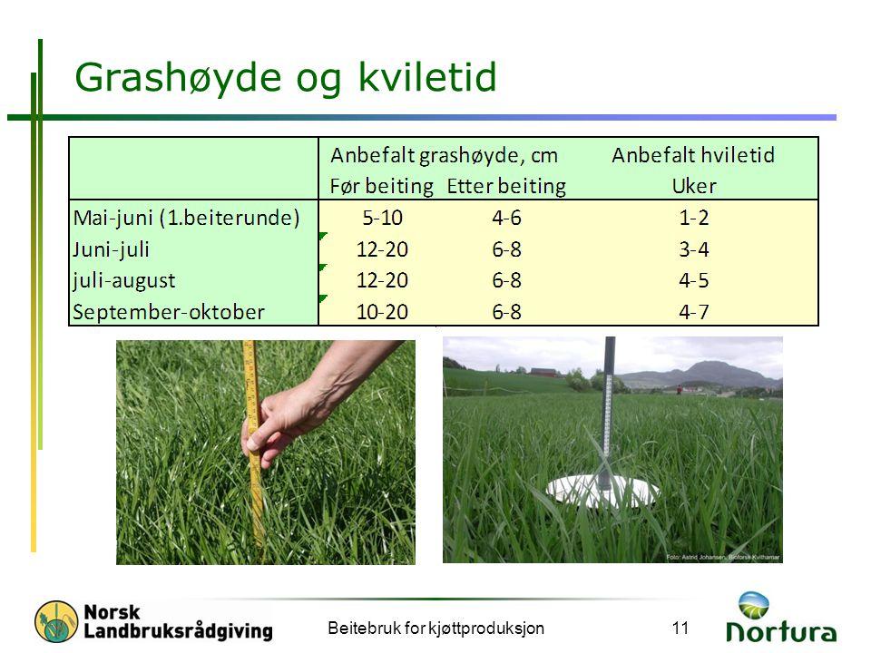 Grashøyde og kviletid Beitebruk for kjøttproduksjon11