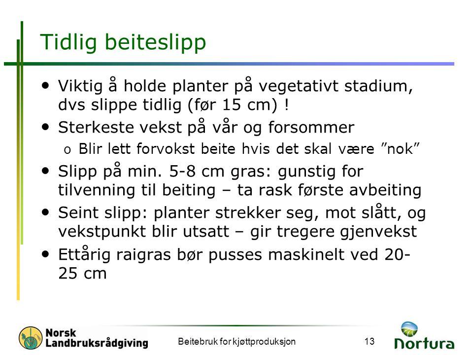 Tidlig beiteslipp • Viktig å holde planter på vegetativt stadium, dvs slippe tidlig (før 15 cm) ! • Sterkeste vekst på vår og forsommer o Blir lett fo