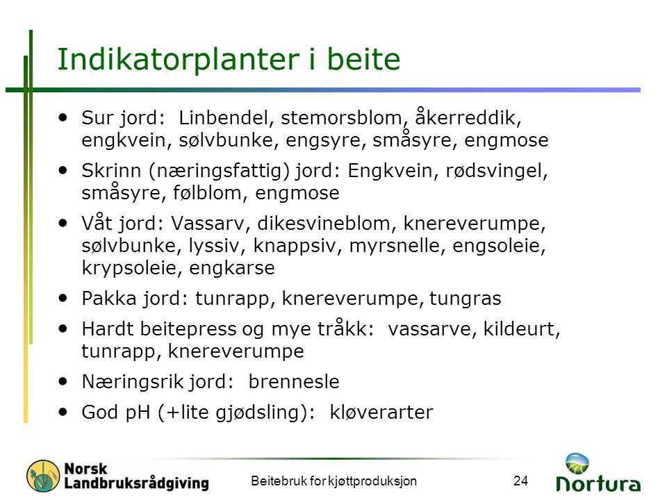 Indikatorplanter i beite • Sur jord: Linbendel, stemorsblom, åkerreddik, engkvein, sølvbunke, engsyre, småsyre, engmose • Skrinn (næringsfattig) jord: