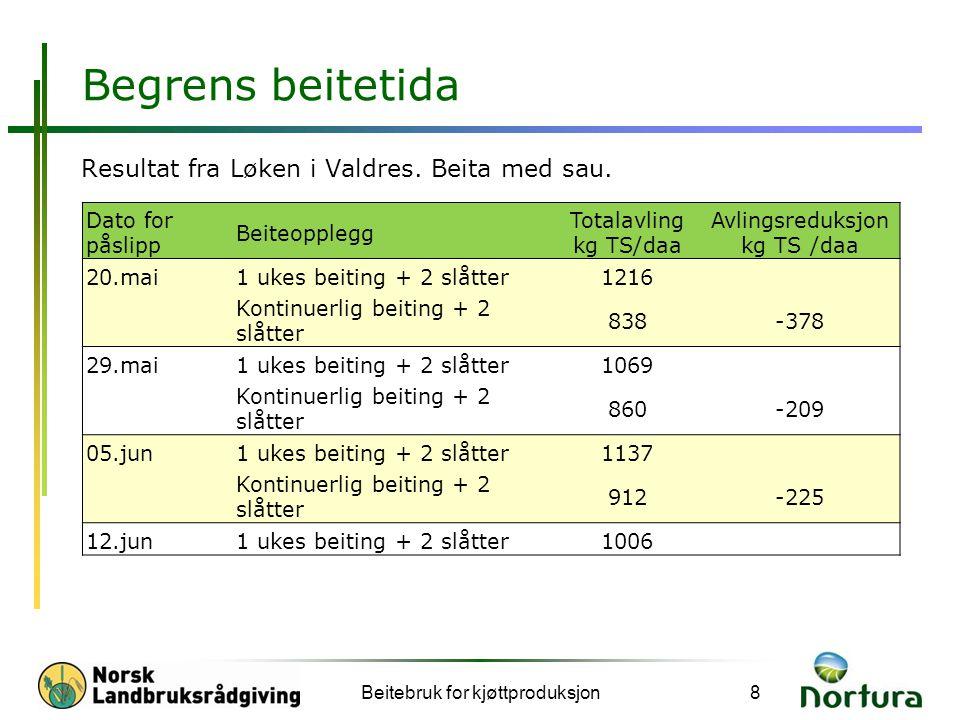 Begrens beitetida Resultat fra Løken i Valdres. Beita med sau. Beitebruk for kjøttproduksjon8 Dato for påslipp Beiteopplegg Totalavling kg TS/daa Avli