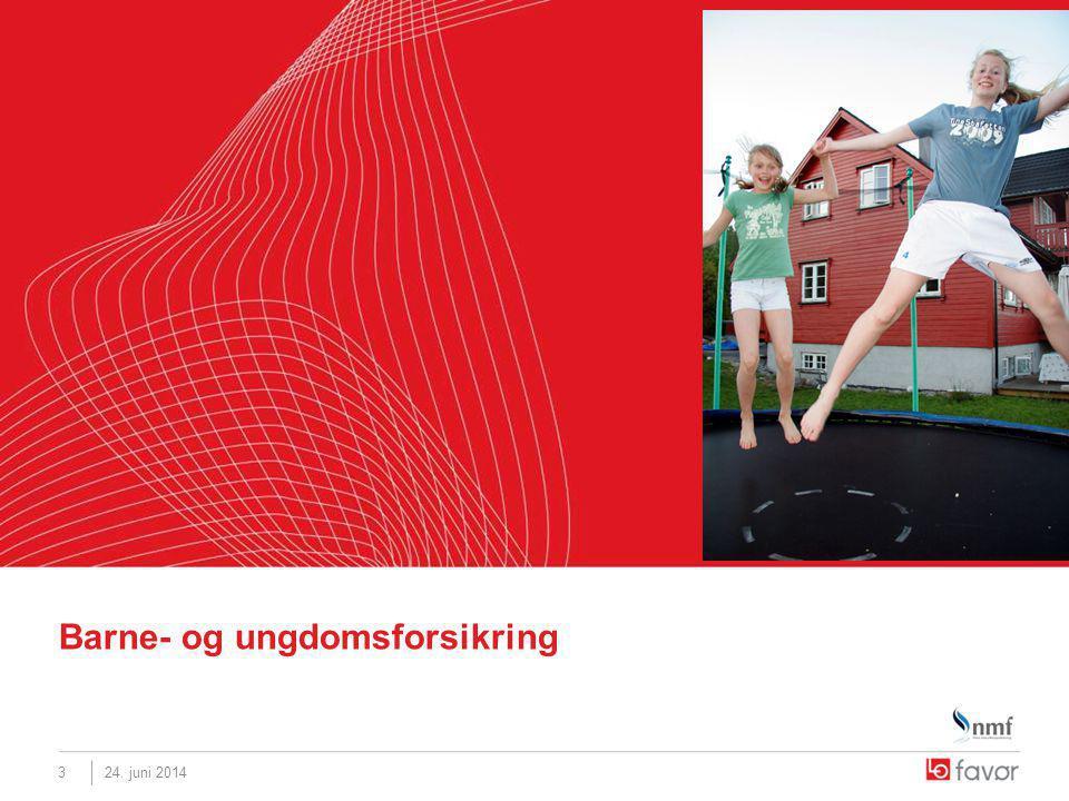 3 Barne- og ungdomsforsikring