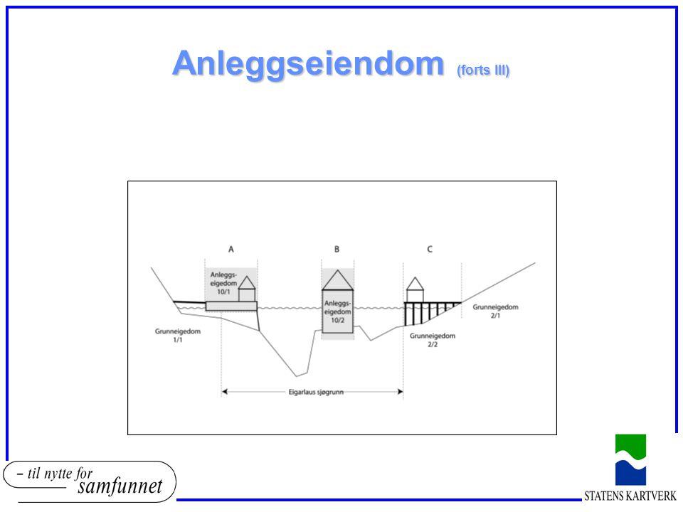 Anleggseiendom (forts III)
