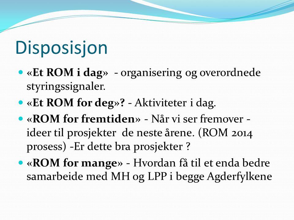Disposisjon  «Et ROM i dag» - organisering og overordnede styringssignaler.