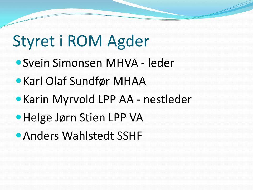 Finansiering  Helsedirektoratet  SSHF  SSHFSponser sekretær med 20 % stilling  Vest-Agder fylkeskommune  Prosjektavtaler eks NAV