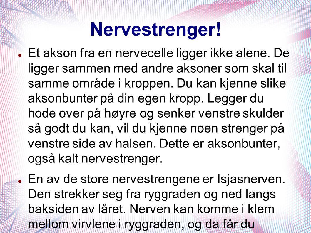 Nervestrenger!  Et akson fra en nervecelle ligger ikke alene. De ligger sammen med andre aksoner som skal til samme område i kroppen. Du kan kjenne s