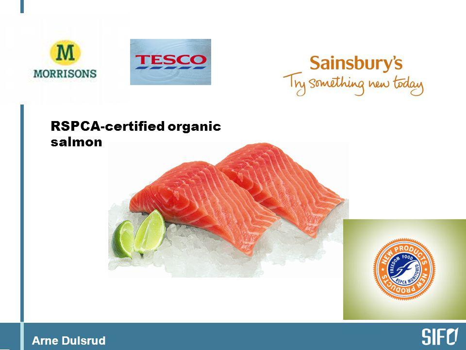 Arne Dulsrud RSPCA-certified organic salmon