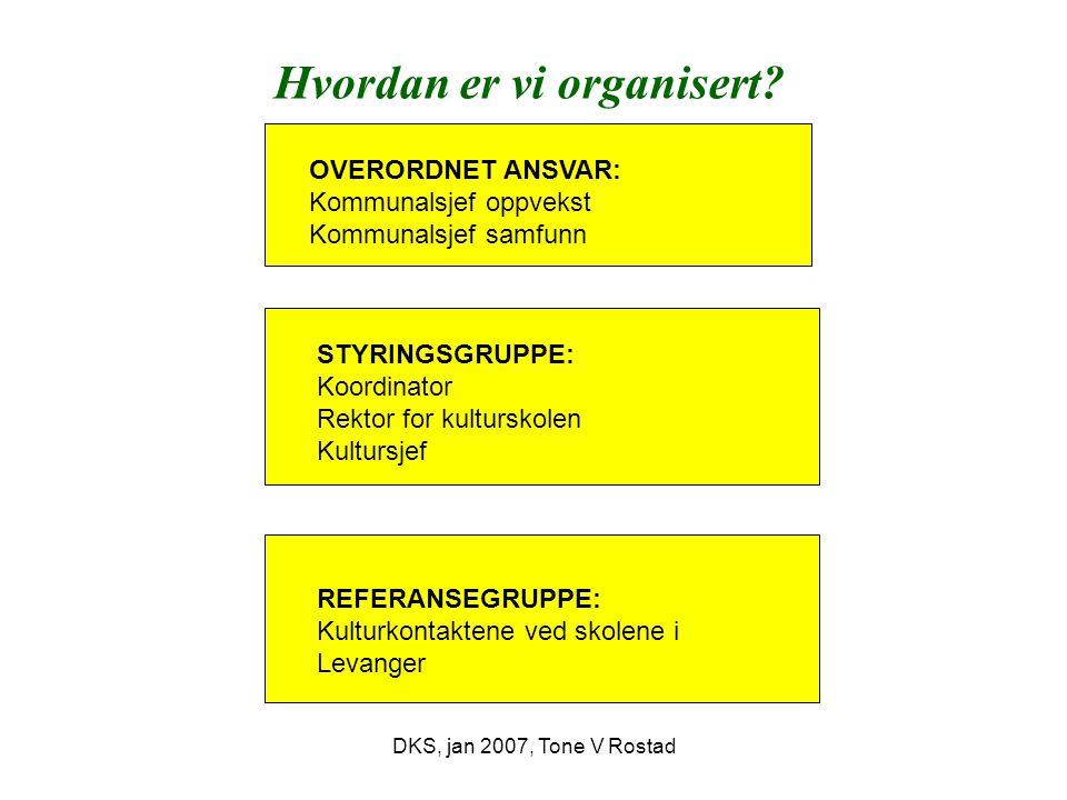DKS, jan 2007, Tone V Rostad Hvordan er vi organisert.