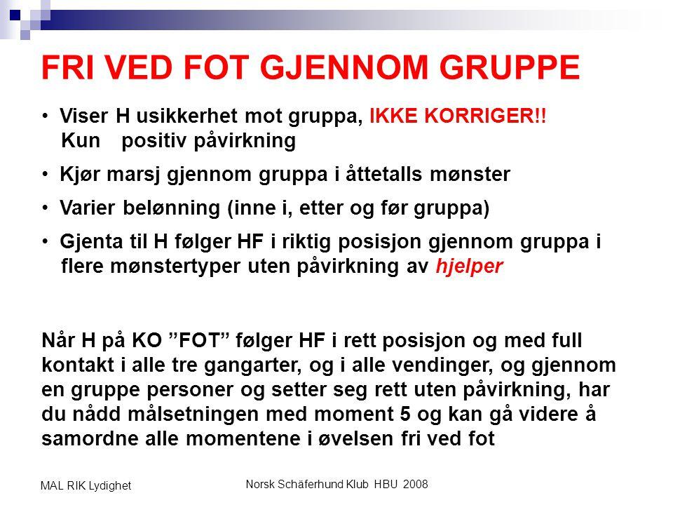 Norsk Schäferhund Klub HBU 2008 MAL RIK Lydighet FRI VED FOT GJENNOM GRUPPE • Viser H usikkerhet mot gruppa, IKKE KORRIGER!! Kun positiv påvirkning •
