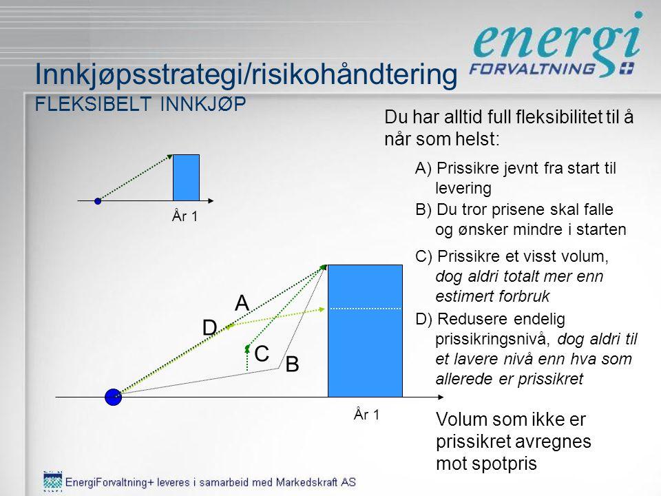 Innkjøpsstrategi/risikohåndtering 5 -ÅRS INDEKSPERIODE Grunnsikring starter i dag for 2009 - 2013 200920102011 2009201020112012 Etter inngang til 2009