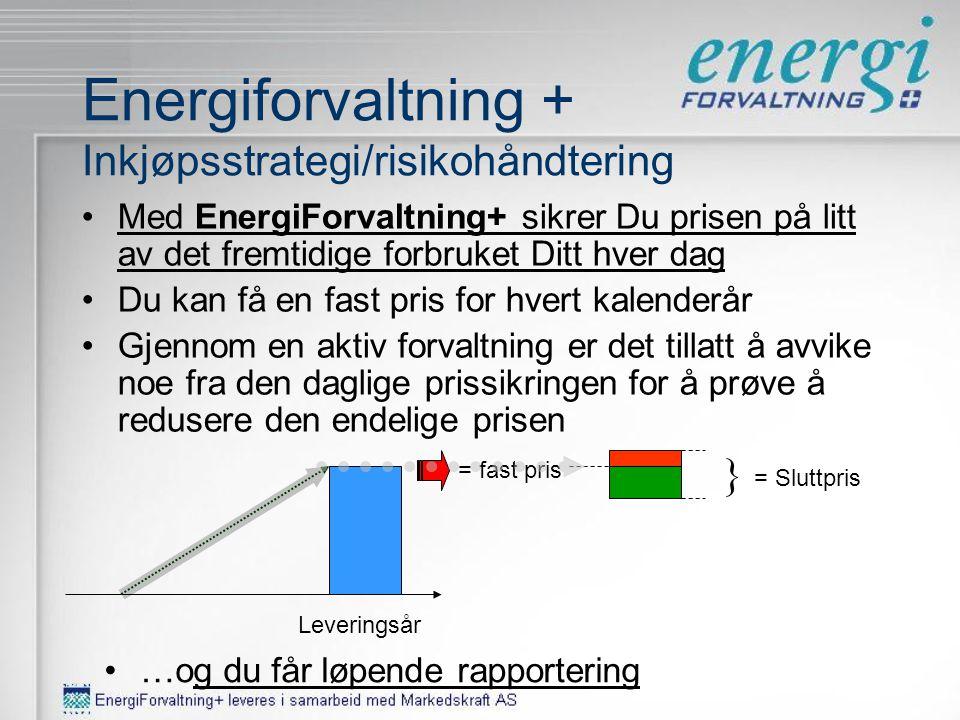 Markedskraft Nøkkeltall Nøkkeltall •Analyse/Rådgivning –Nordens største uavhengige analysemiljø –13 analytikere og 15 rådgivere jobber daglig sammen i